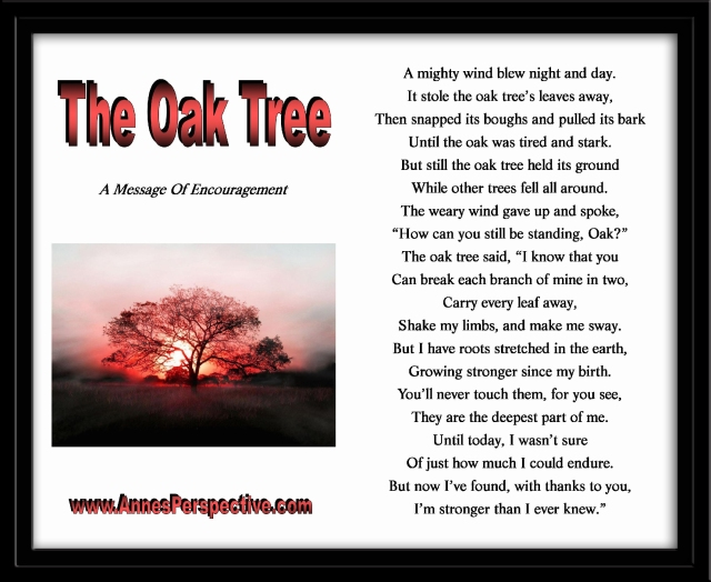 The Oak Tree (with frame) - Copy